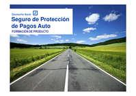 Seguro de protección de pagos Auto